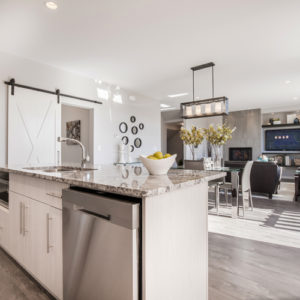 Brookland 17 interior kitchen / dining / great room / open concept